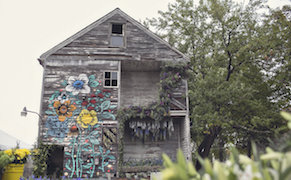 Post image for An Abandoned House in Detroit Blooms with Aromatic Plants