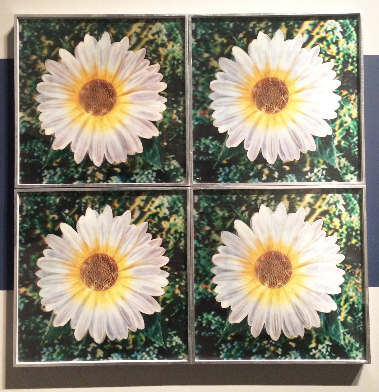 A&T_Warhol daisies