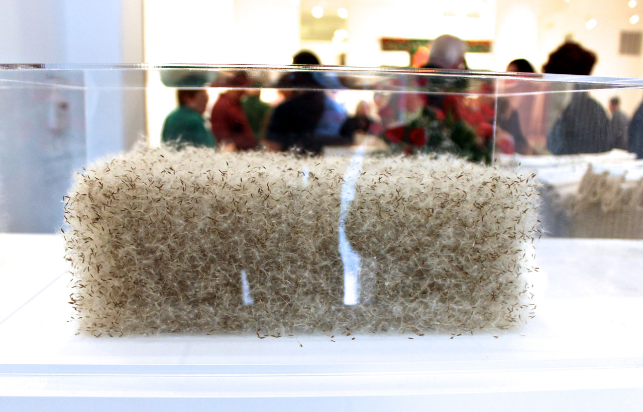 One of Susan Goethell Campbell's pollen sculptures