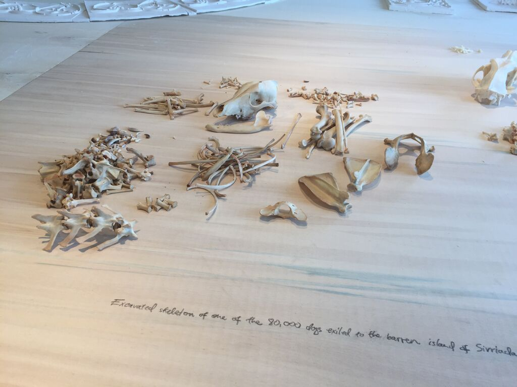 """Skeleton of dog from the island of Sivriada in Michael Rakowitz, """"The Flesh is Yours, The Bones are Ours"""" at Galata Greek Primary School"""