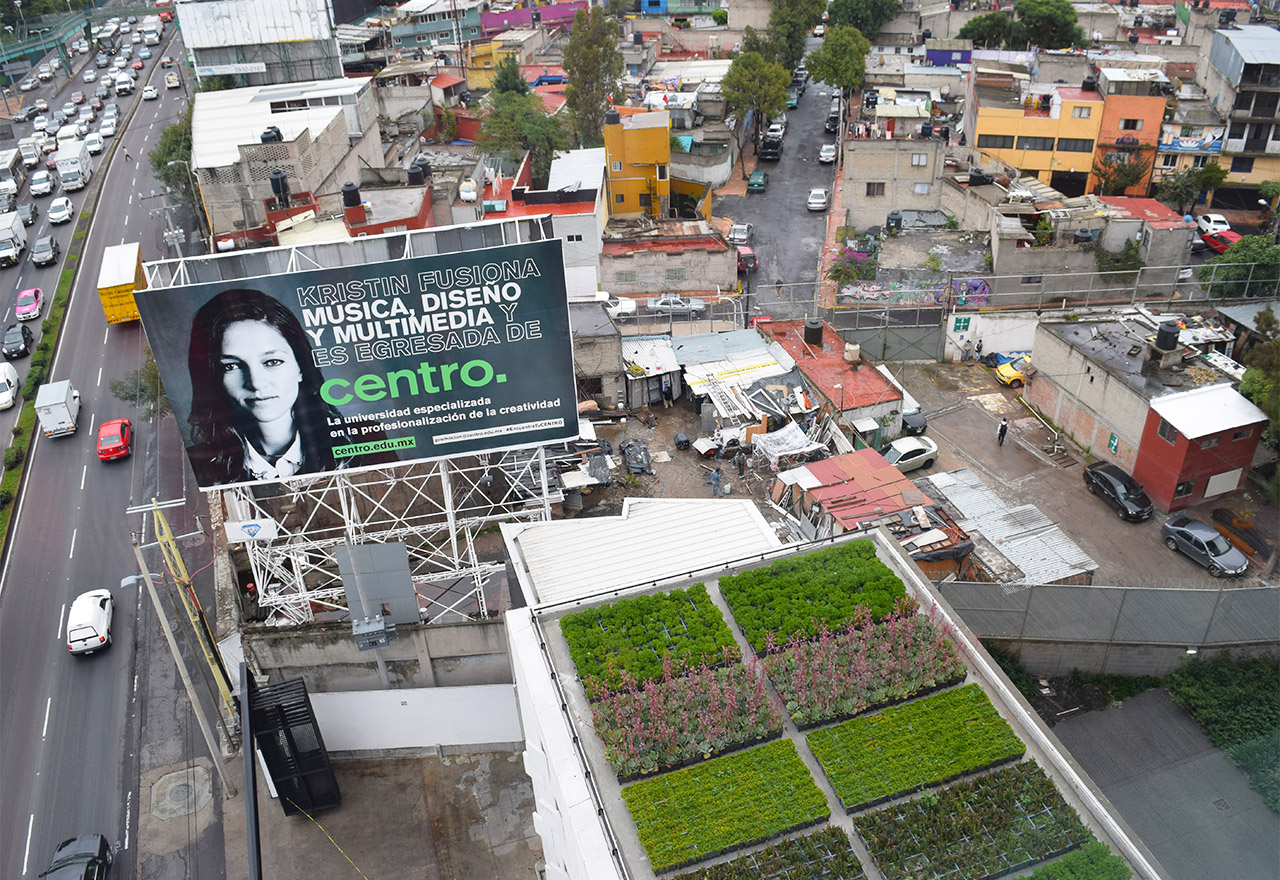 A view of one of CENTRO's green roofs with the América neighborhood beyond