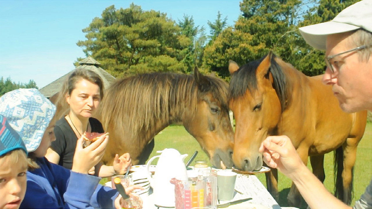 Harris's family, in the foreground, eats with horses after the Land Shape Symposium in northern Denmark.