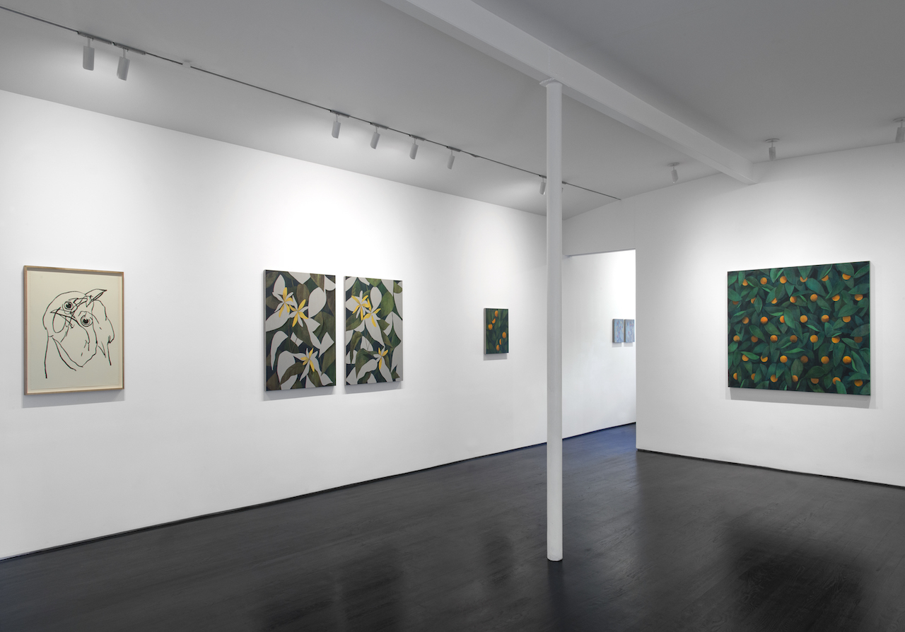 Ryan Mrozowski 'Open, Other, End' installation view (photo by Adam Reich, all images courtesy On Stellar Rays and the artist)