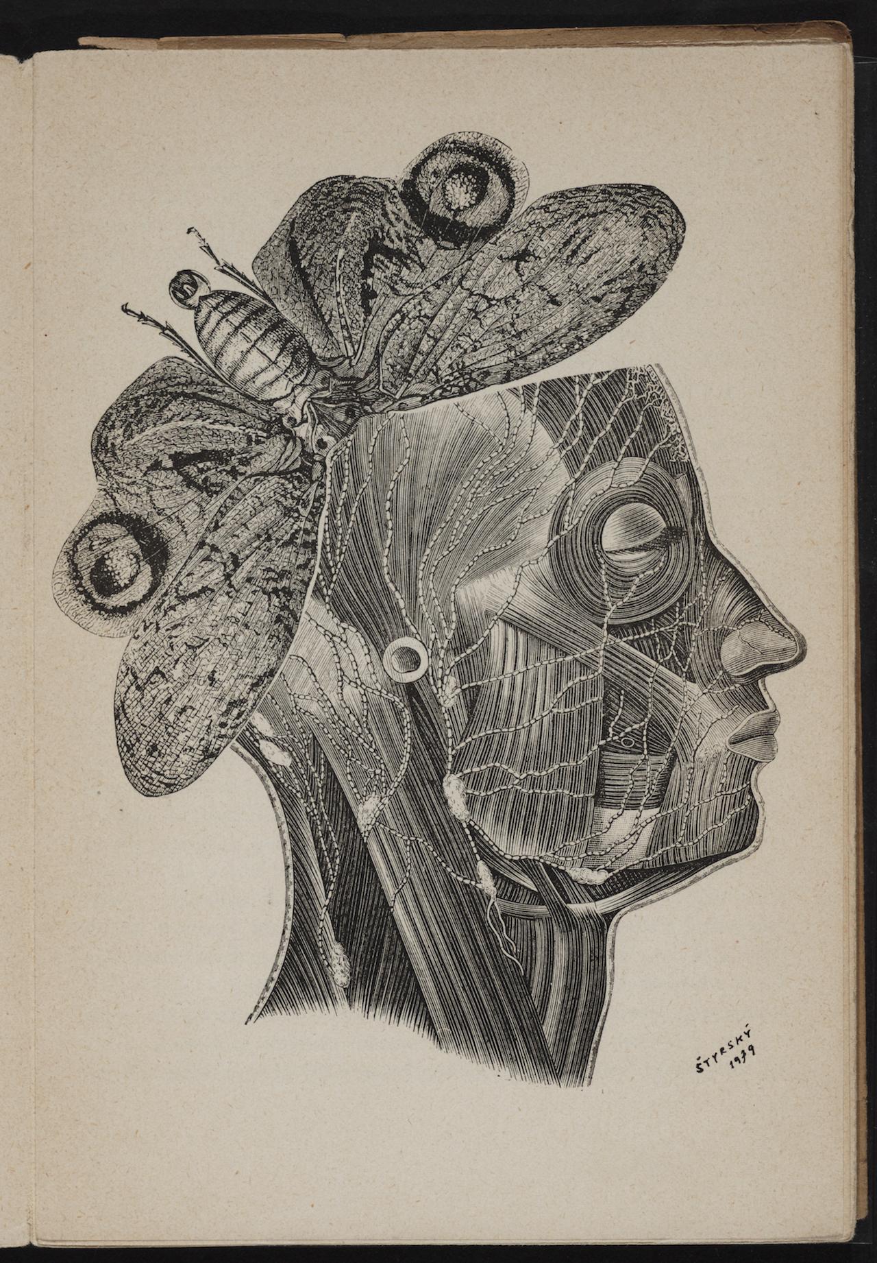 """Jindřich Štyrský, illustration for """"Zastřený profil"""" (1940) by Miloš Marten"""
