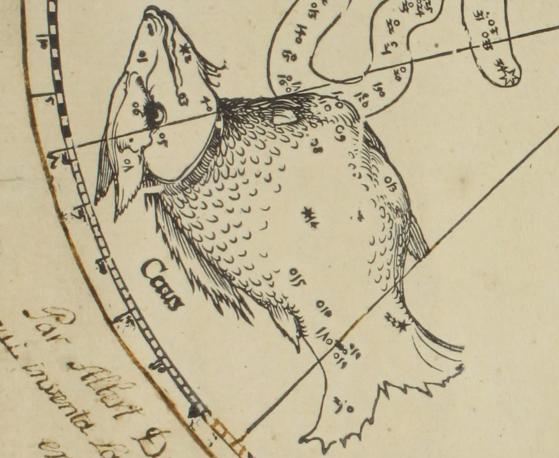 Detail of the southern hemisphere star map by Albrecht Dürer (courtesy Art Collections of the City of Nuremberg)