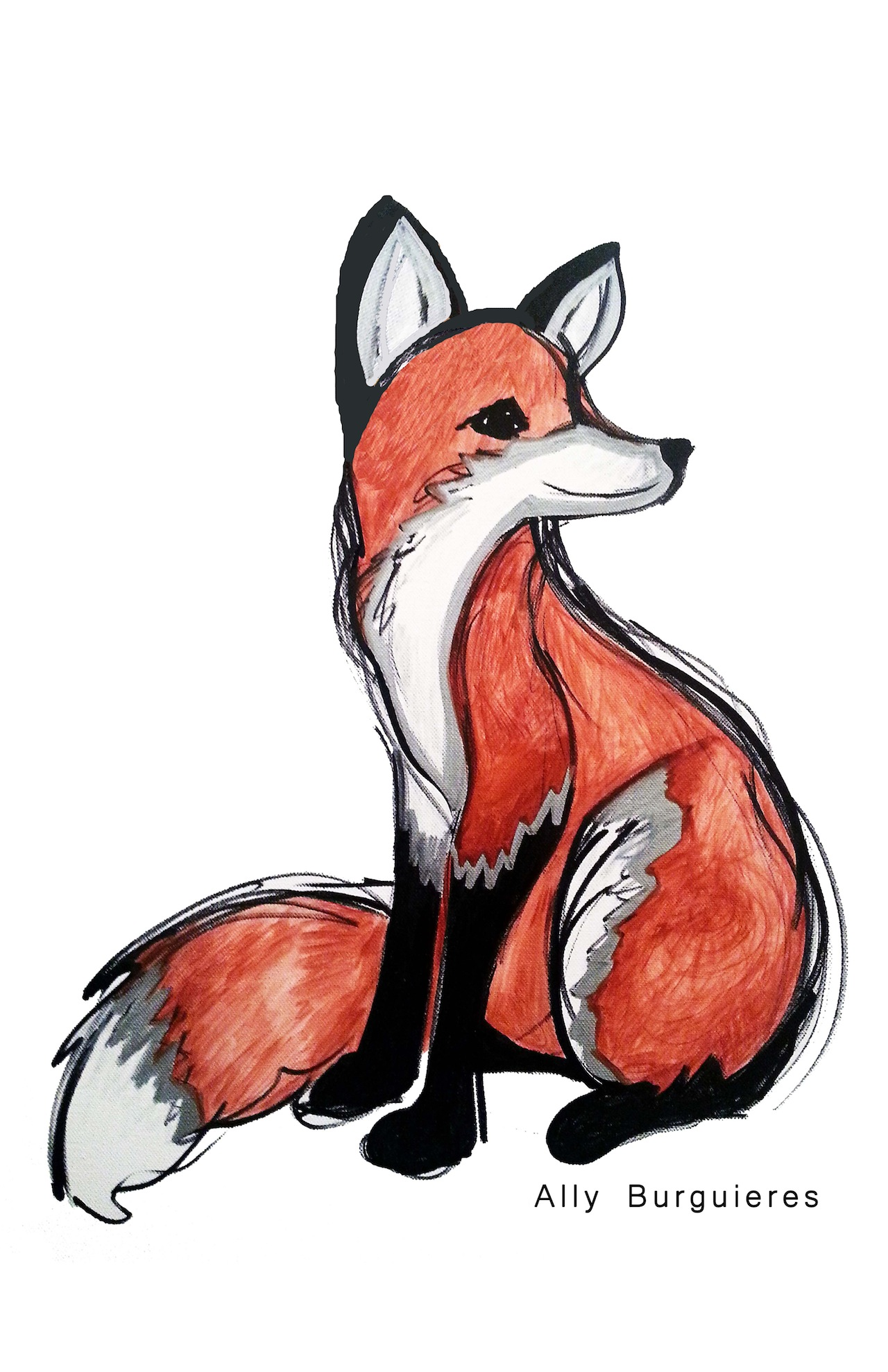 Fox Without Crown