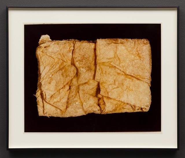 "Hollis Frampton, ""II. JELLY (Physalia physalis),"" Ektacolor photograph (1982)"