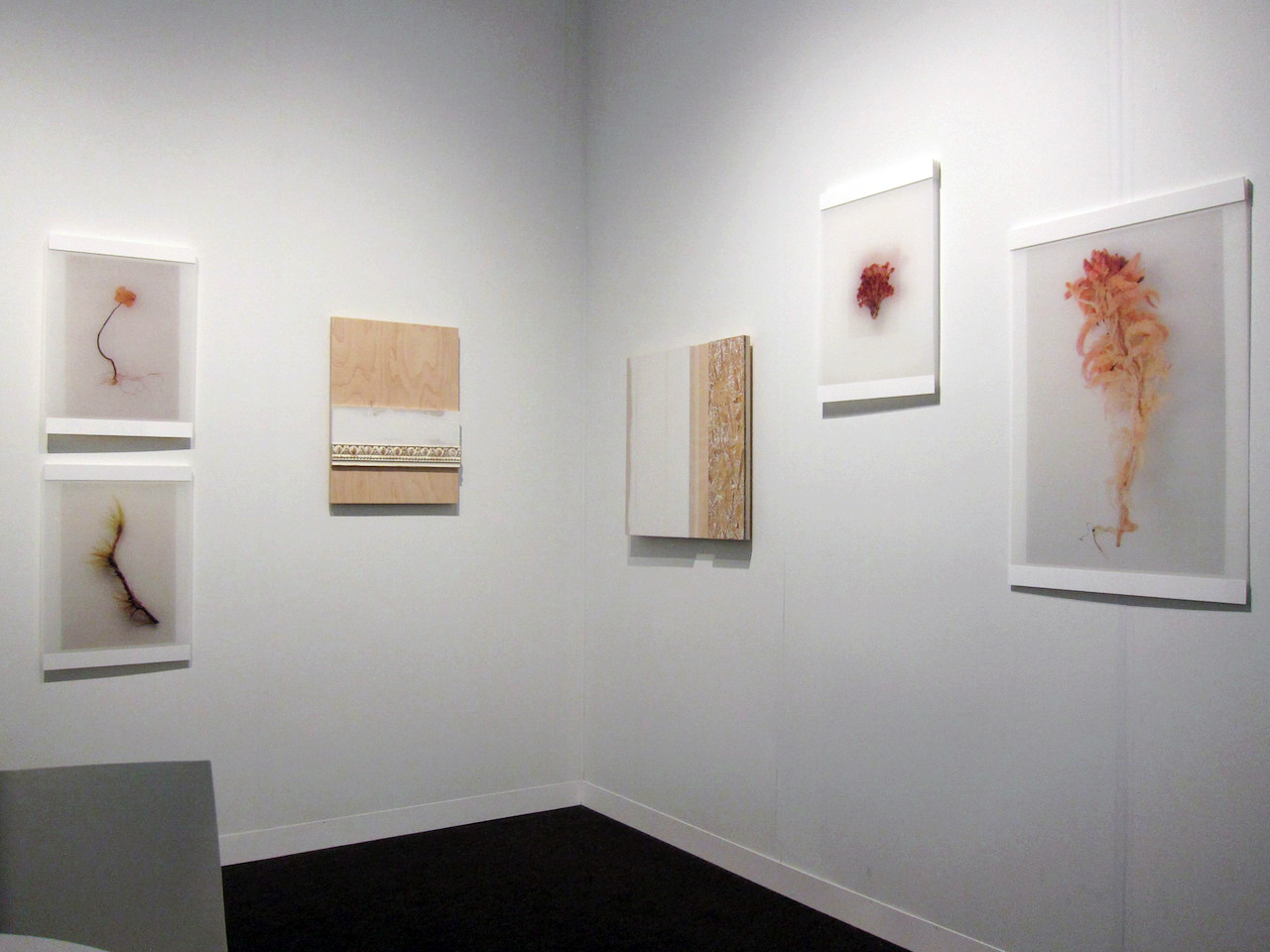 Works by Marion Wilson and Kirsten Nelson at Frederieke Taylor Gallery