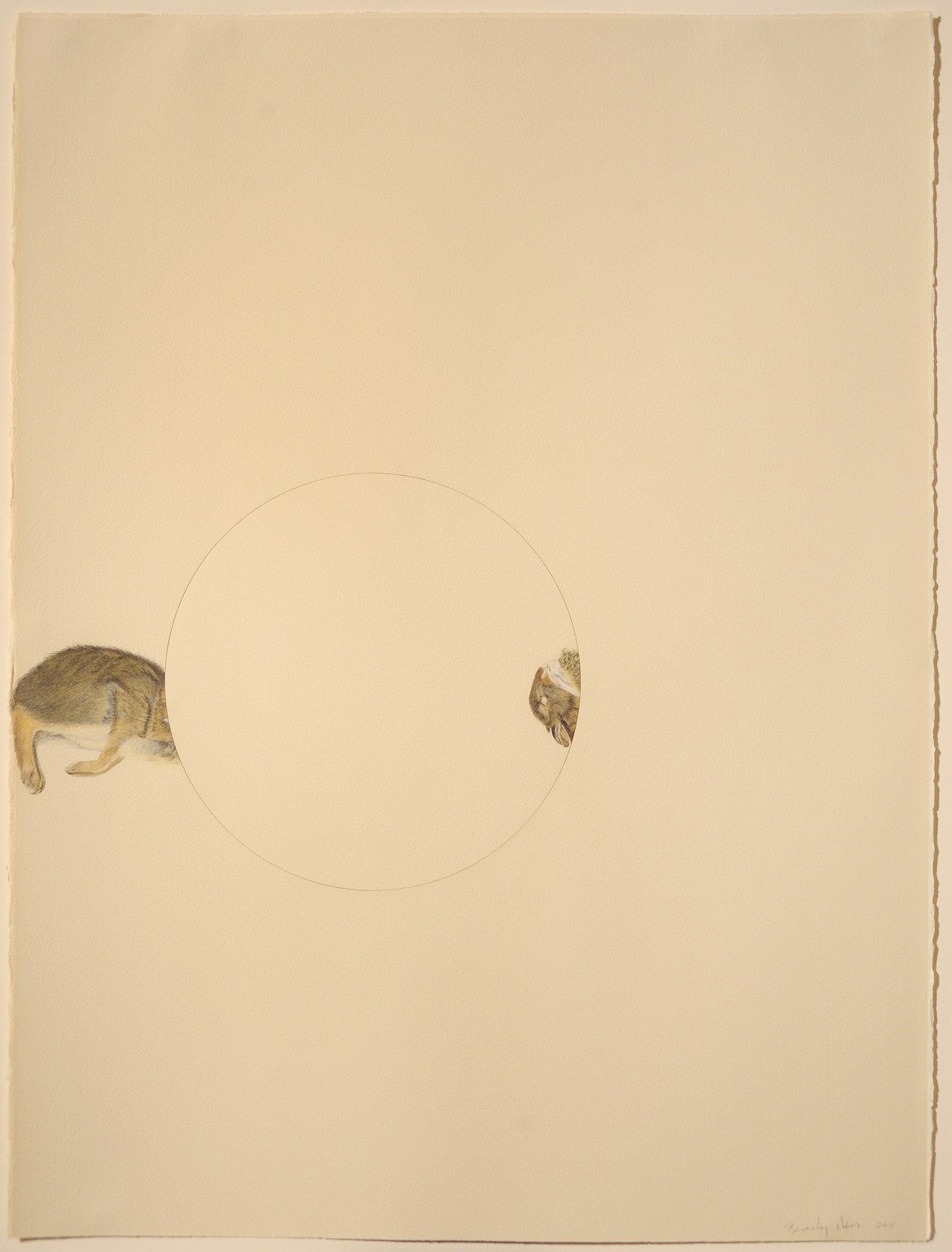 """Beverly Ress, """"Rabbit Circle"""" (2011) colored pencil on paper, laser cut, twisted, reattached (photo by Greg Staley)"""