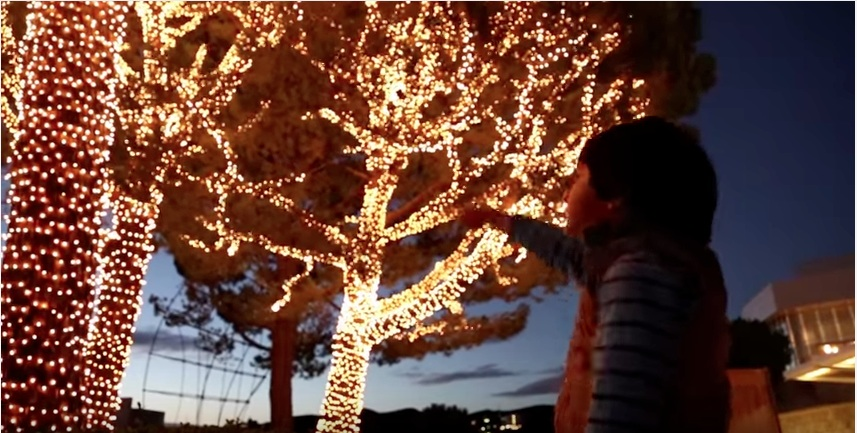 Holiday Lights at the Getty (via youtube)
