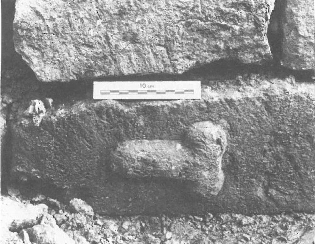 East Bight phallic carving