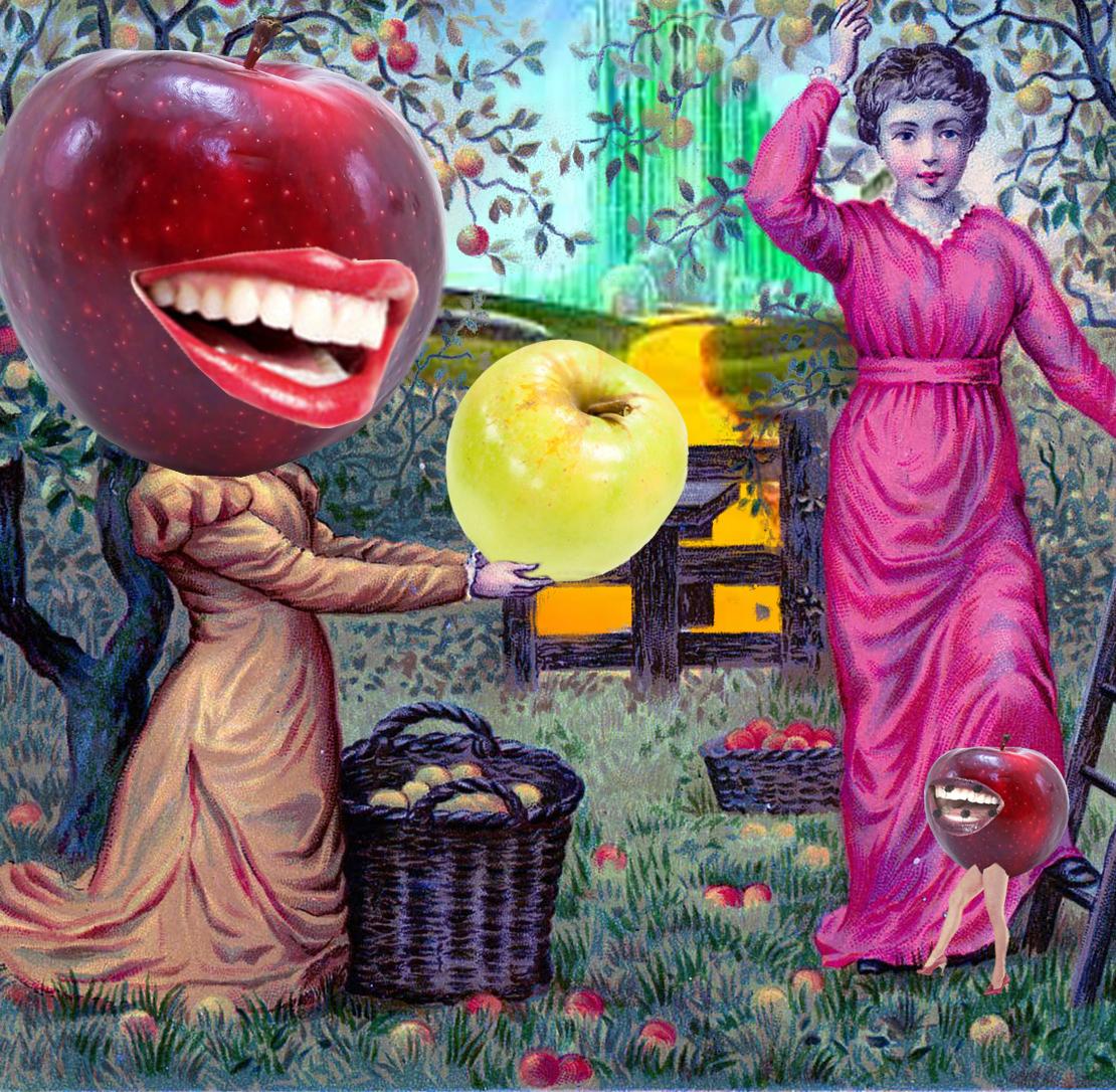 Fallen Fruit Collage 1