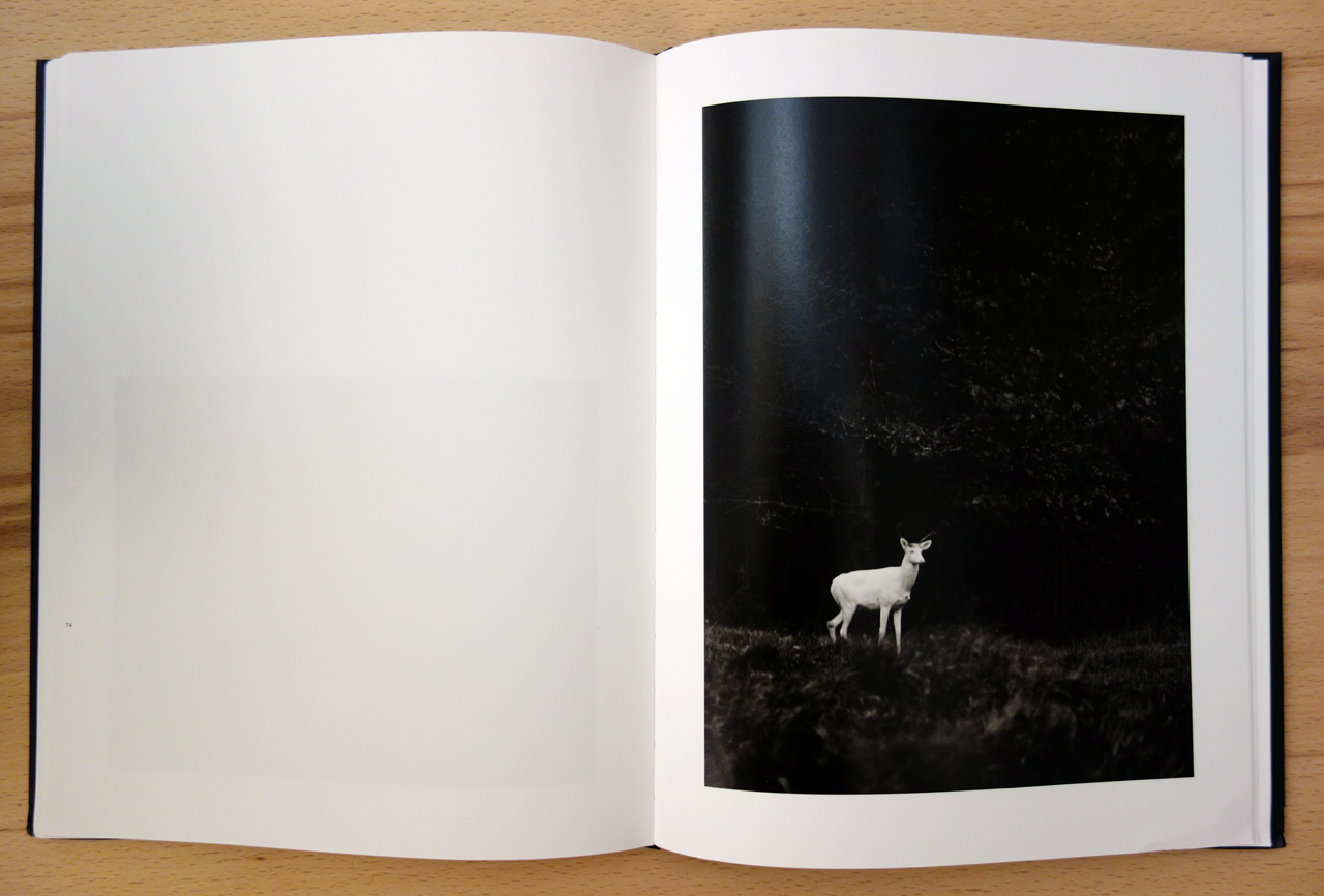Pages of 'George Shiras: In the Heart of the Dark Night' (photo of the book for Hyperallergic)
