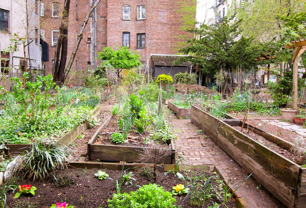 The Sixth Street and Avenue B community garden (photo by Eric Wittman/Flickr)
