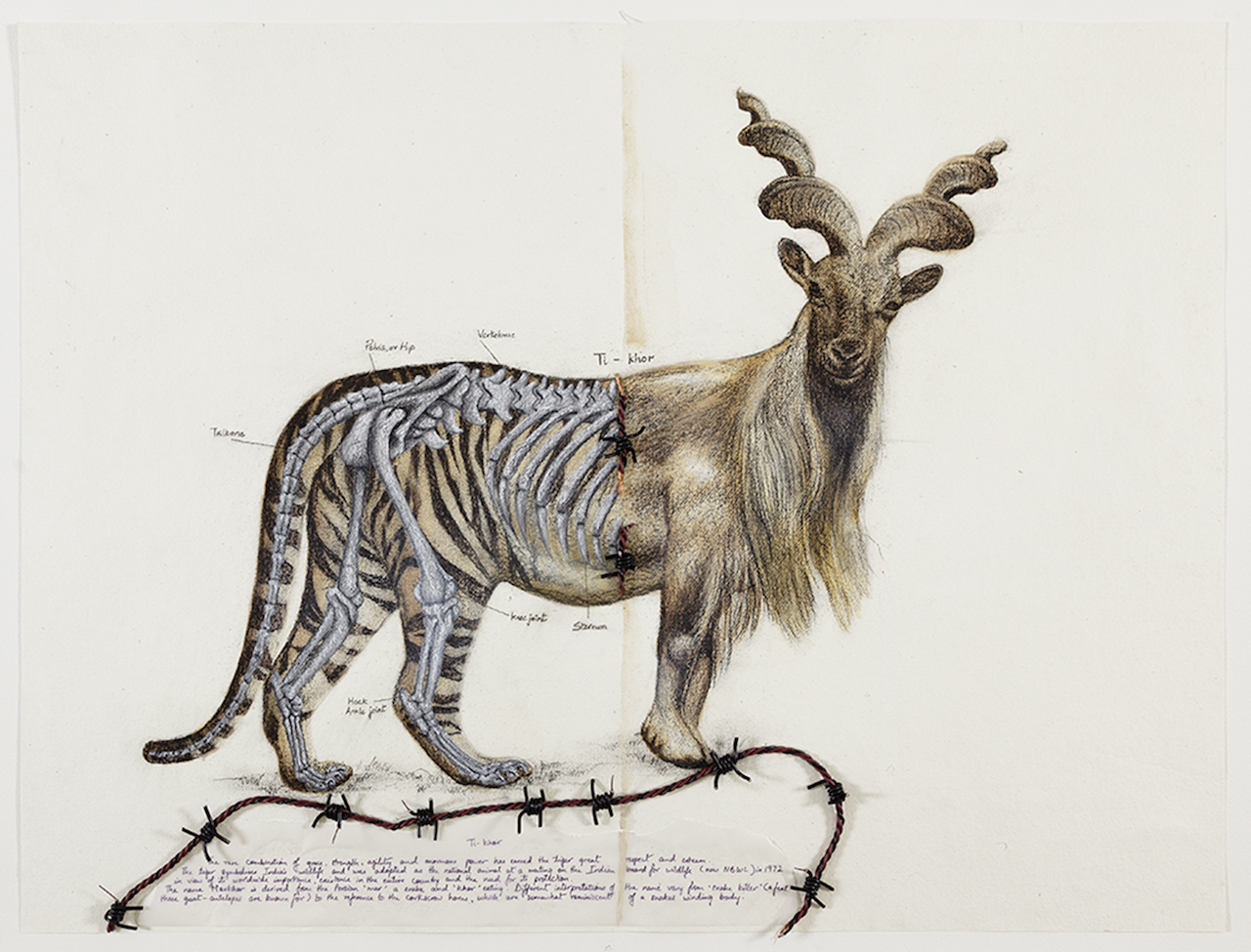 """Reena Saini Kallat, """"Hyphenated Lives (Ti-khor)"""" (2015), gouache, charcoal, ink, and electric wire on handmade paper"""