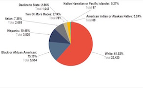 Post image for Staff at NYC Arts Organizations Is 62% White, City Report Shows