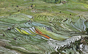 Post image for Chrysler Museum of Art Features Photographer Ed Burtynsky in Exhibition Focused on Global Water Issues