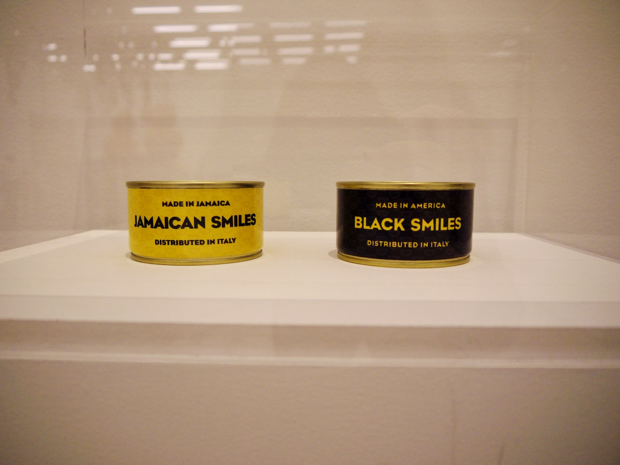 Canned Smiles (2013)