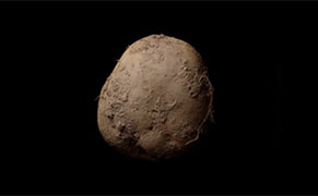 """Post image for """"Looks Like an Old Turd"""": Outraged Netizens React to Reported $1.8 Million Sale of Potato Photograph"""