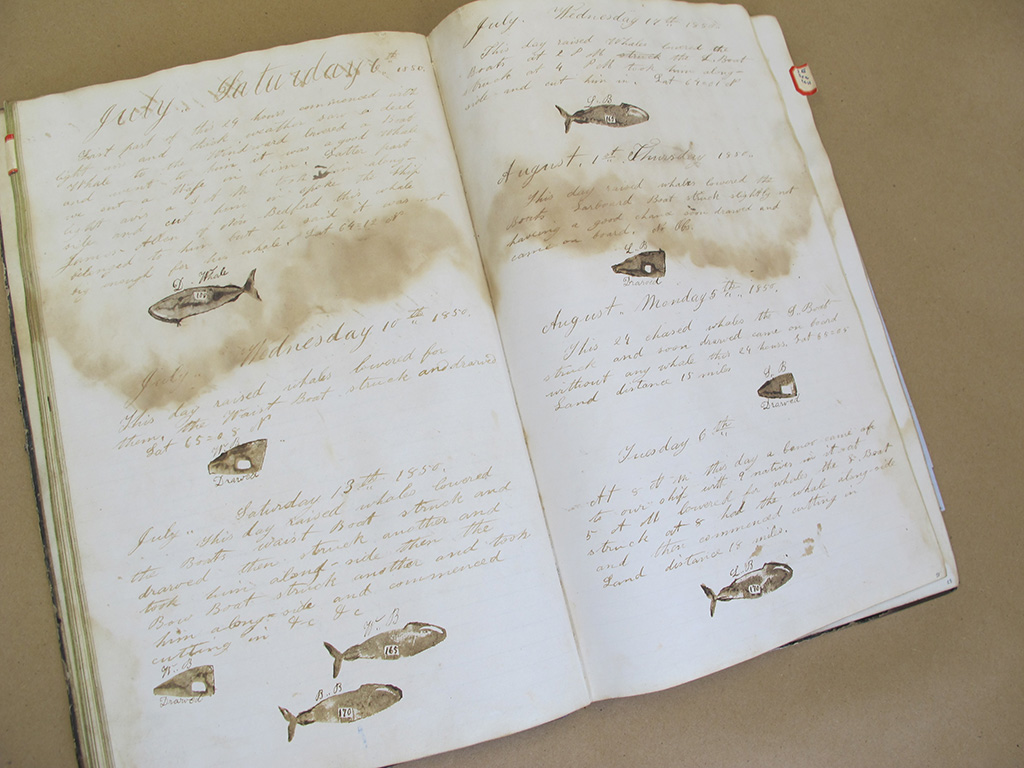 Whaling Logbooks