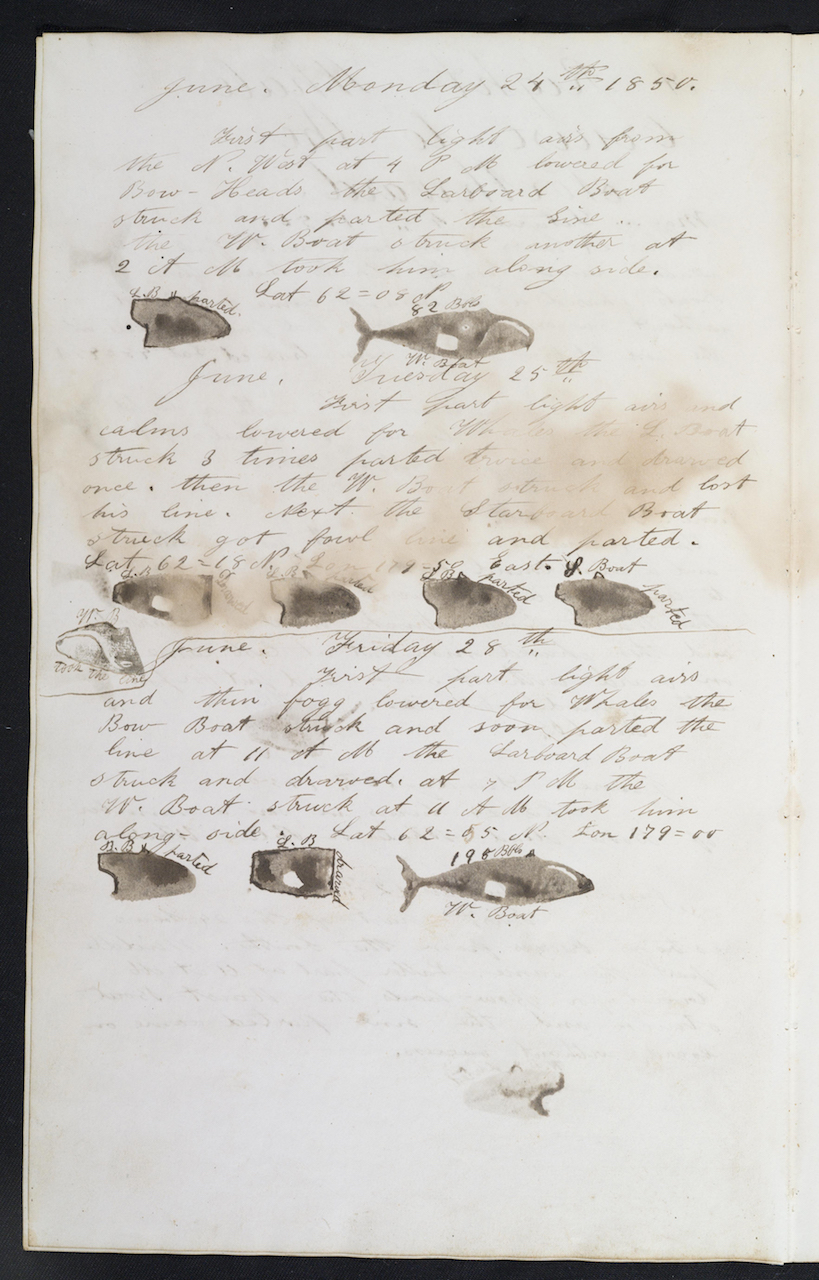 Detail of a page in a whaling logbook (courtesy Martha's Vineyard Museum)