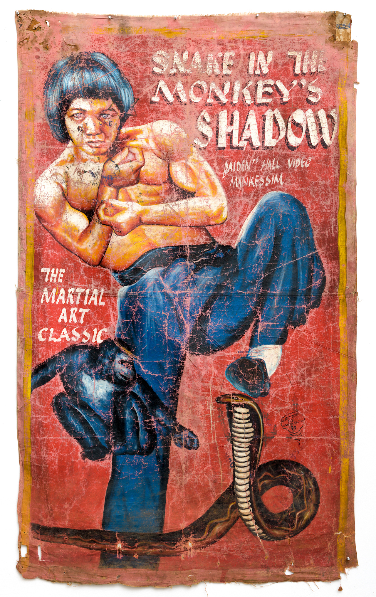20. Gilbert Forson_Snake in the Monkey's Shadow