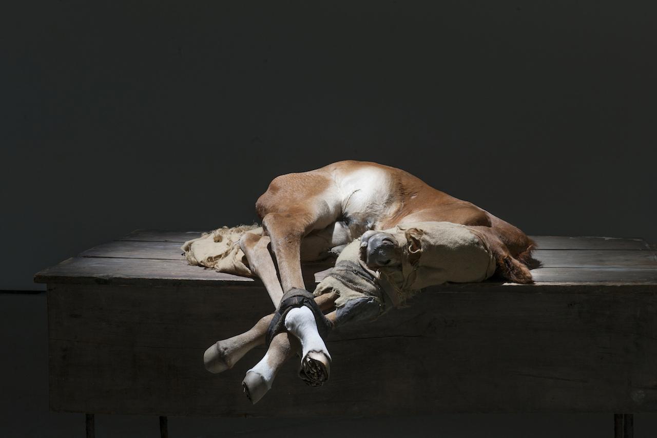 "Berlinde De Bruyckere, ""to Zurbarán"" (2015), horse skin, fabric, wood, iron, and polyester (photo by Mirjam Devriendt)"