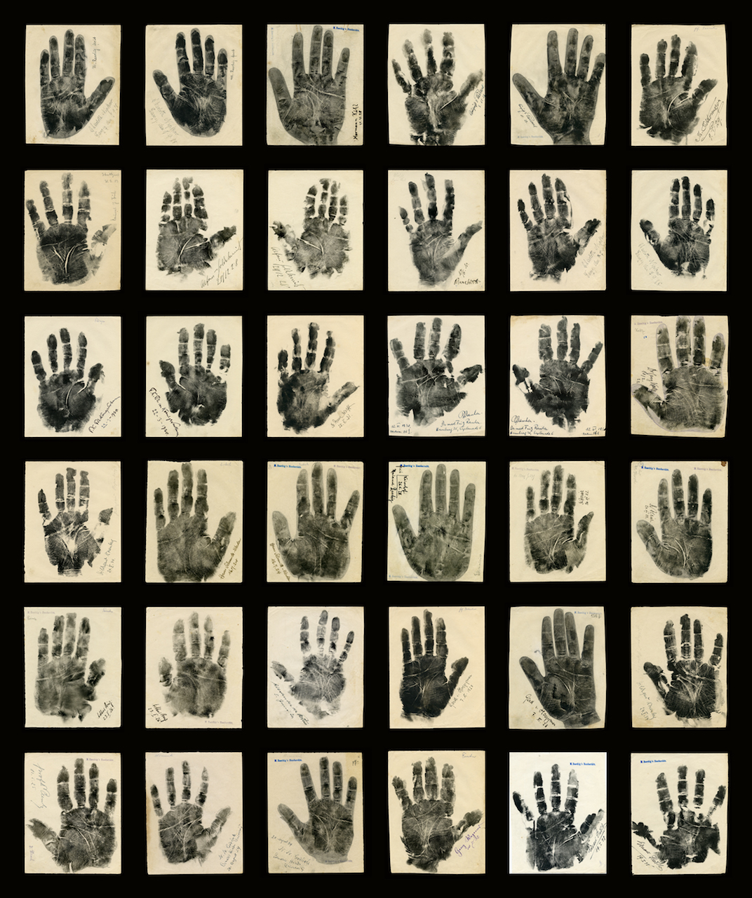 """Marianne Raschig, """"Collection of Original Vintage Palm Prints"""" (Berlin, 1925-35), ink and graphite on paper (courtesy Ricco/Maresca Gallery)"""