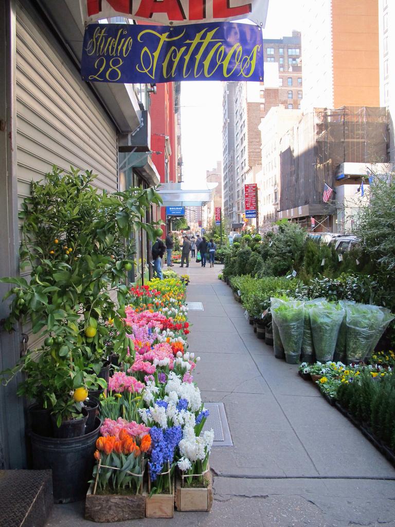 Flowers lining the sidewalk on West 28th Street in Chelsea (photo by Kristine Paulus/Flickr)