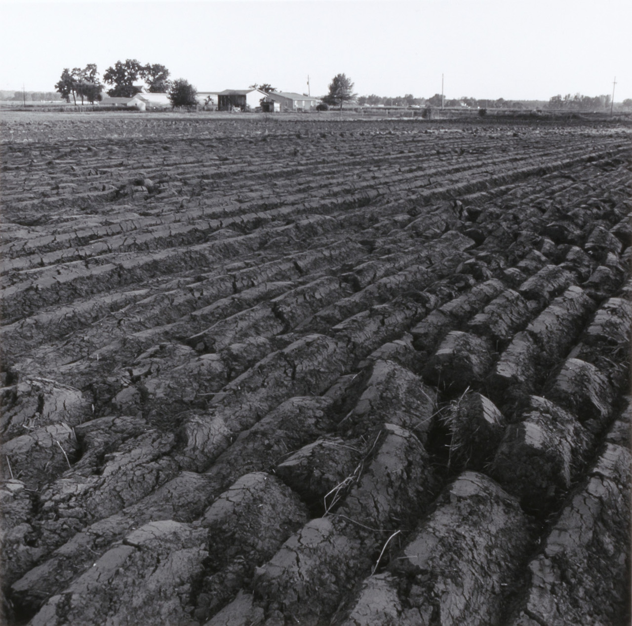 No Mountains in the Way: Photographs from the Kansas Documentary Survey, 1974
