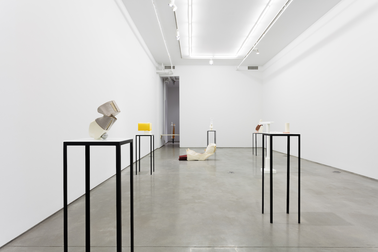 Installation view of 'Ross Knight: Human Stuff' at Team Gallery