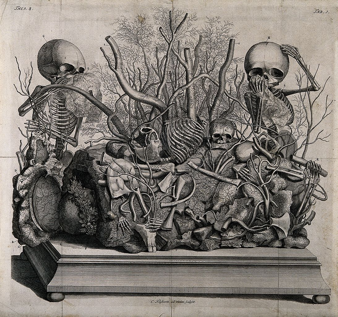 An engraving of a tableau of injected vessels and infant skeletons by Frederik Ruysch (via Wellcome Images/Wikimedia)