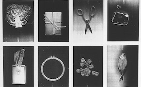 Post image for The Personal and Poetic Prints of a Female Pioneer of Copier Art