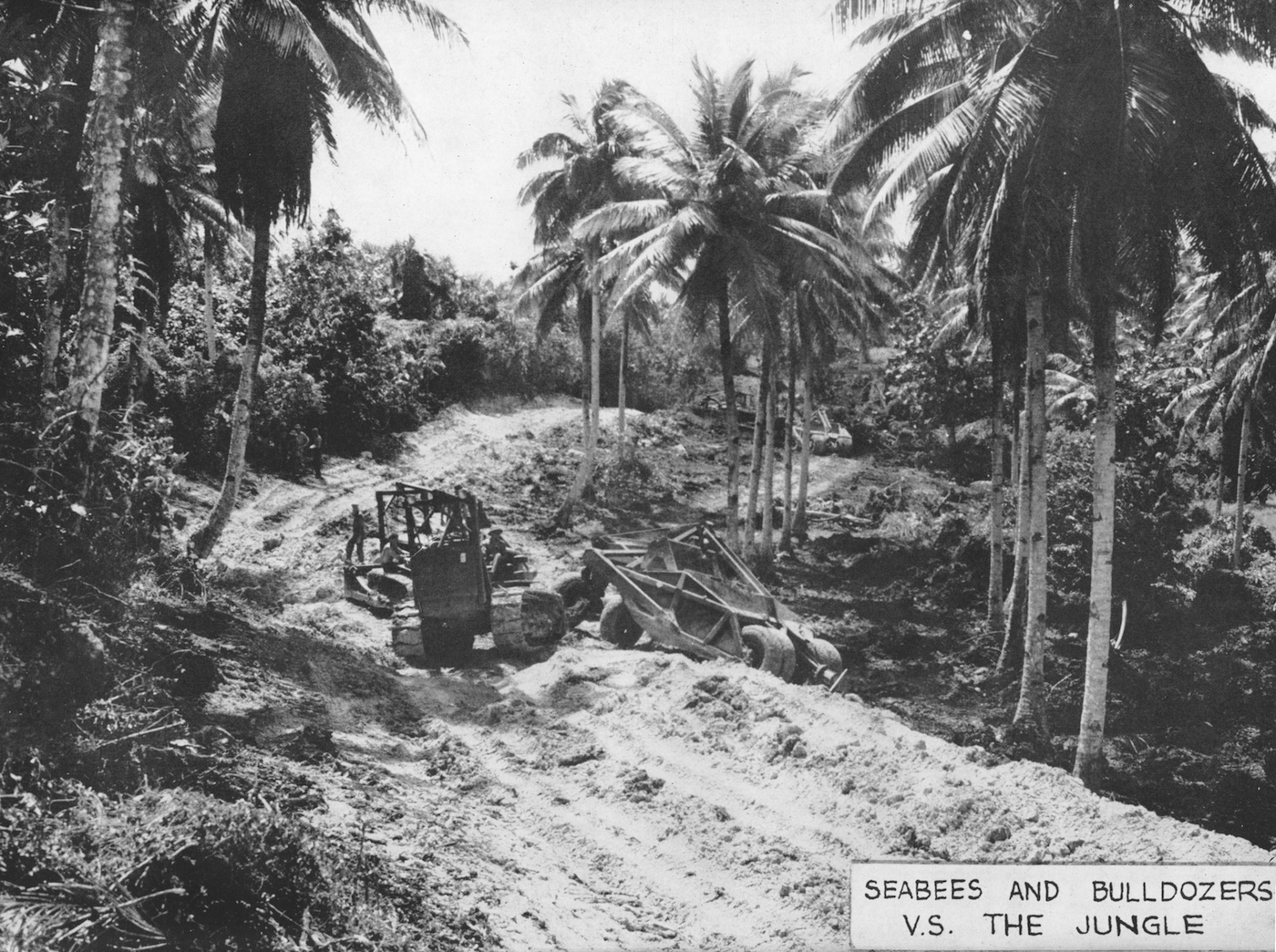 Seabee tearing down trees in the jungle (courtesy Yale University Press)