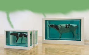 Post image for Damien Hirst's Pickled Animals May Have Leaked Carcinogenic Fumes [UPDATED]