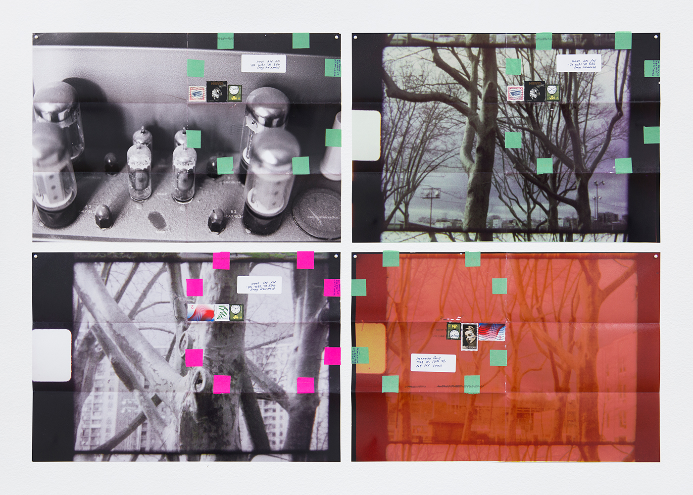 """Moyra Davey, """"Dust, Amp, Trees"""" (2016), 4 c-prints, tape, postage, ink, 12 x 18 inches each, 24 1/2 x 36 1/2 inches overall (all images courtesy the artist and Murray Guy, New York)"""