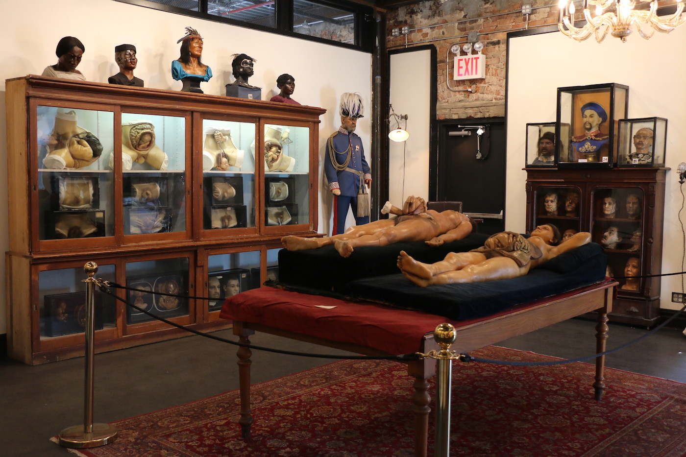 Installation view, 'House of Wax' at the Morbid Anatomy Museum (all photos by Michelle Enemark for Atlas Obscura unless otherwise noted)