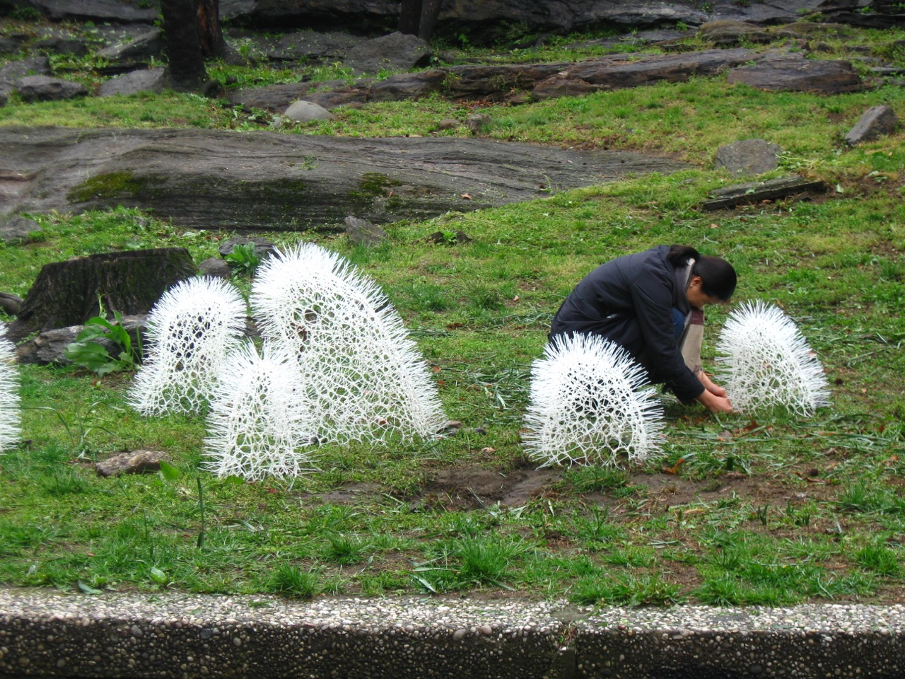 """On opening day, Sui Park bends down to make slight adjustments to """"Sprout"""" 2016"""