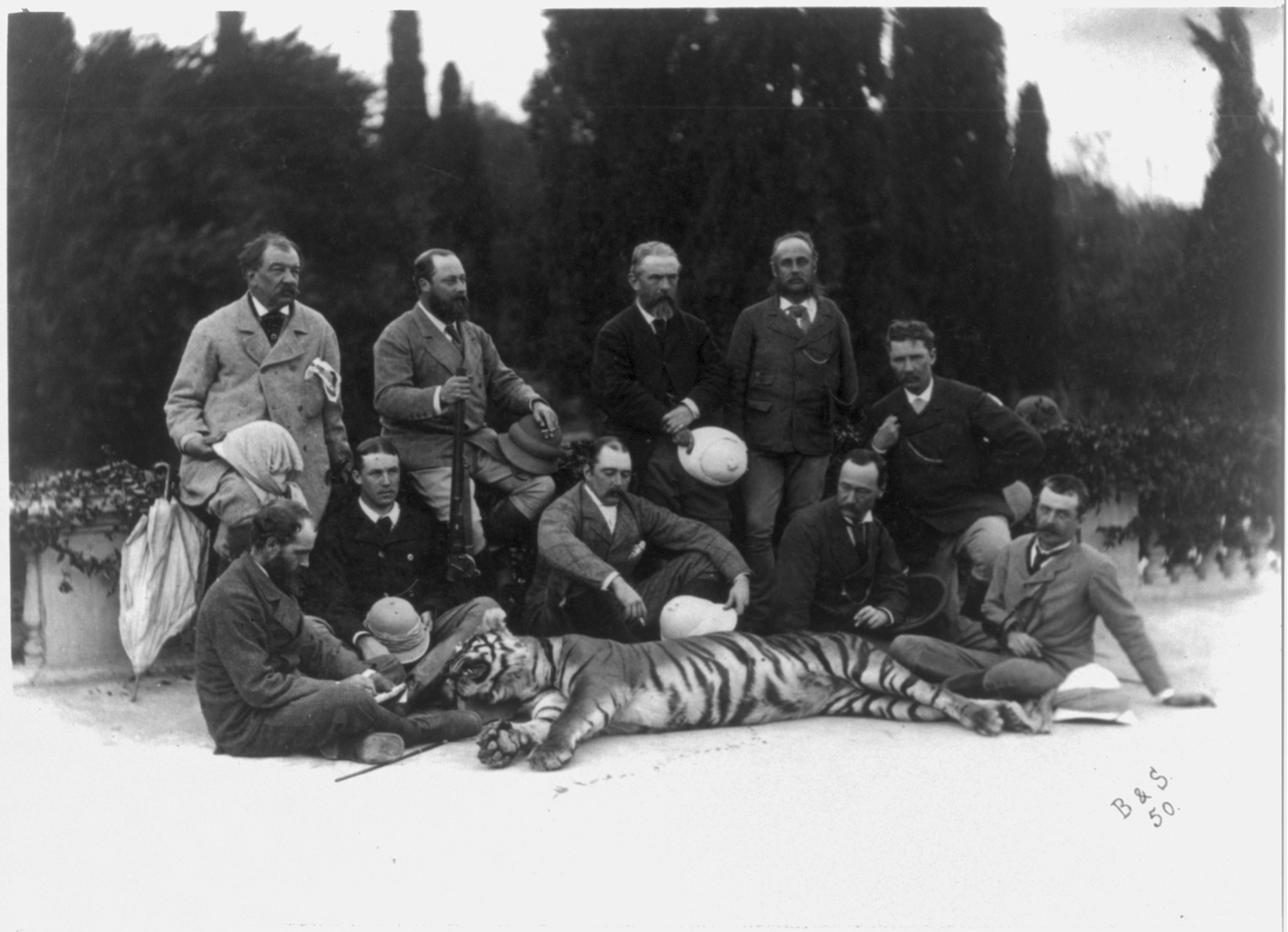Bourne & Shepherd's c. 1875 photograph of the rifle-toting Prince of Wales, posing with a tiger he killed and members of his hunting party during his tour of India (via the Library of Congress)