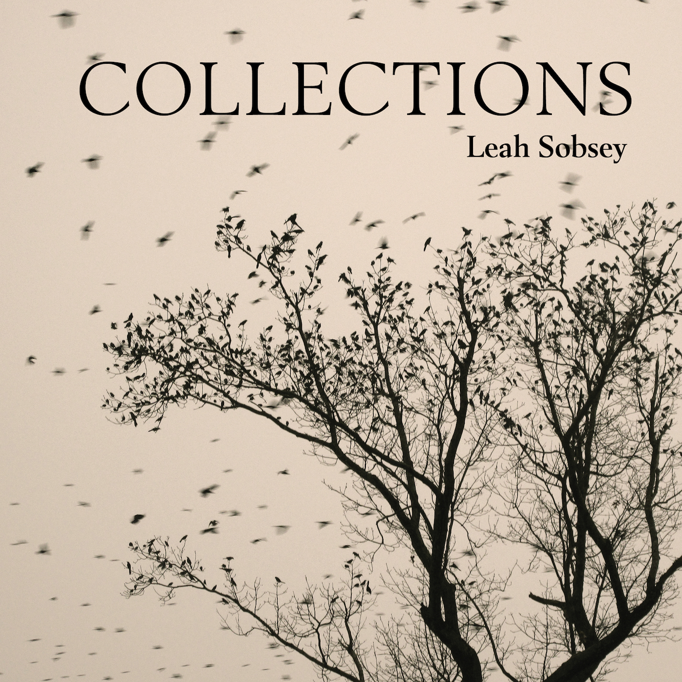 Leah Sobsey: Collections