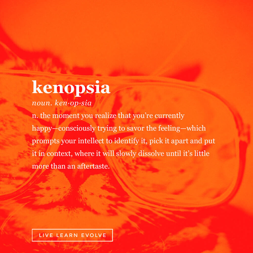 kenopsia-obscure-dictionary