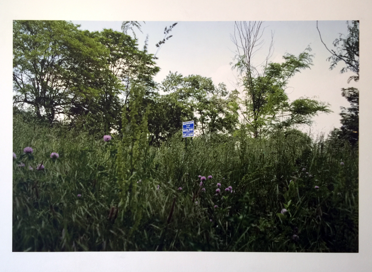 Katarina Jerinic, Beautified Landscape (2013), pigment print on PhotoTex, 40x60 inches (All photos by author for Hyperallergic)