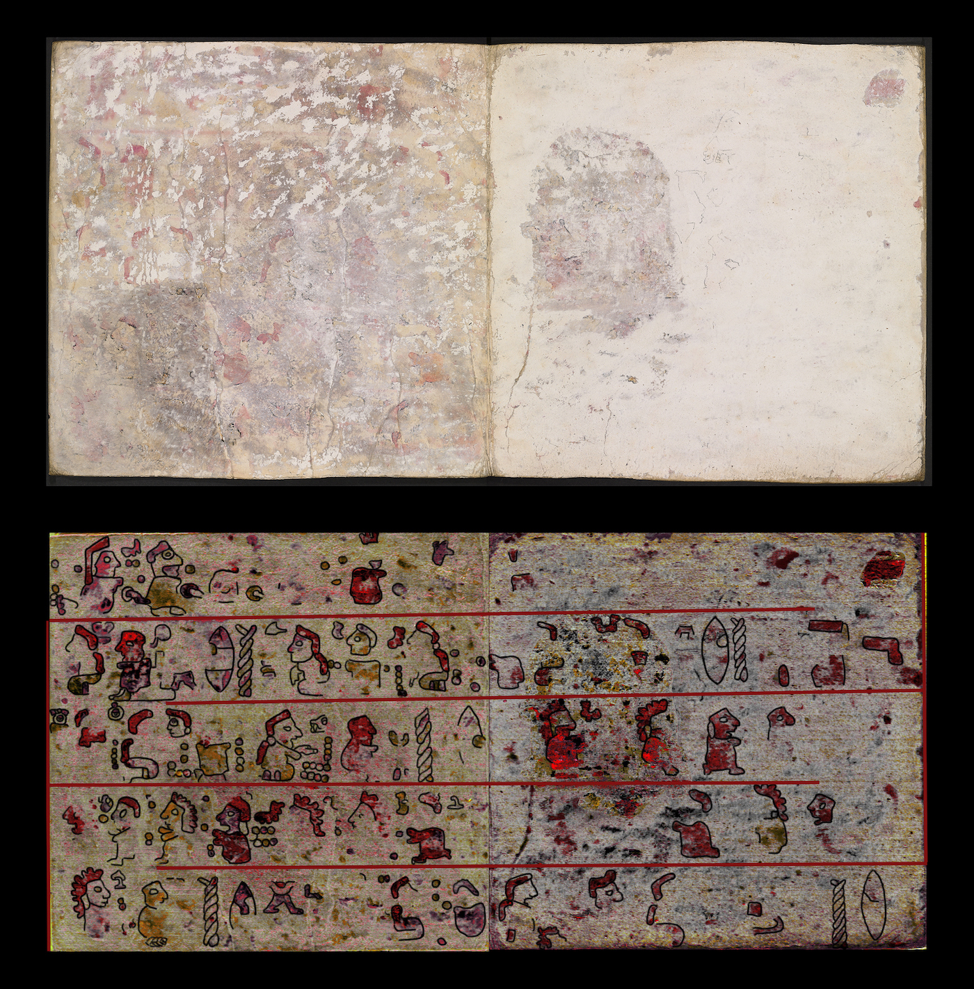 Pages 10 and 11 of the back of Codex Selden, with pages as they appear to the naked eye and images created using hyperspectral imaging to show the underlying hidden pictographic scenes (photo © Journal of Archaeological Sciences: Reports, 2016 Elsevier)