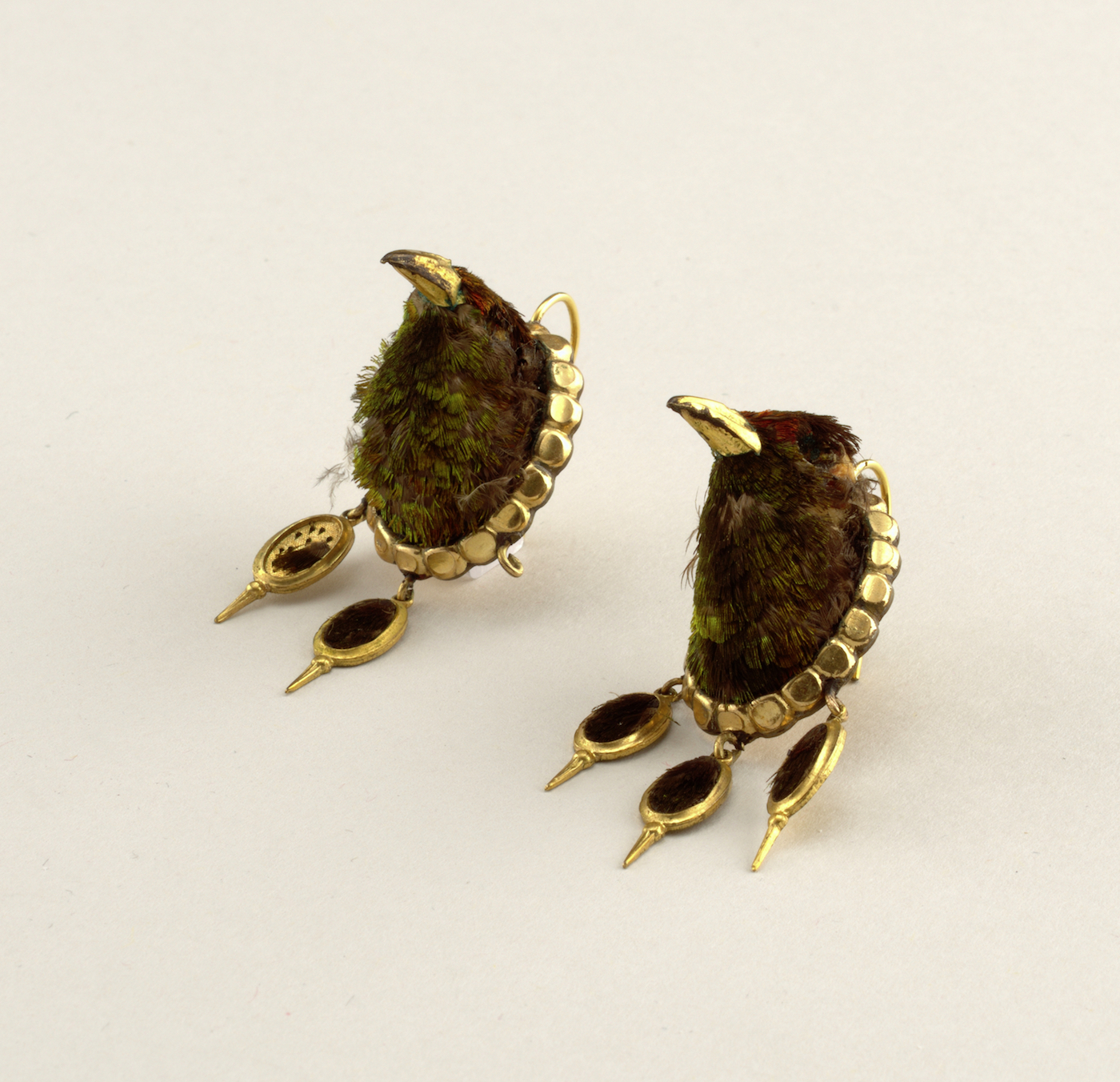 Late 19th century earrings with real hummingbird heads