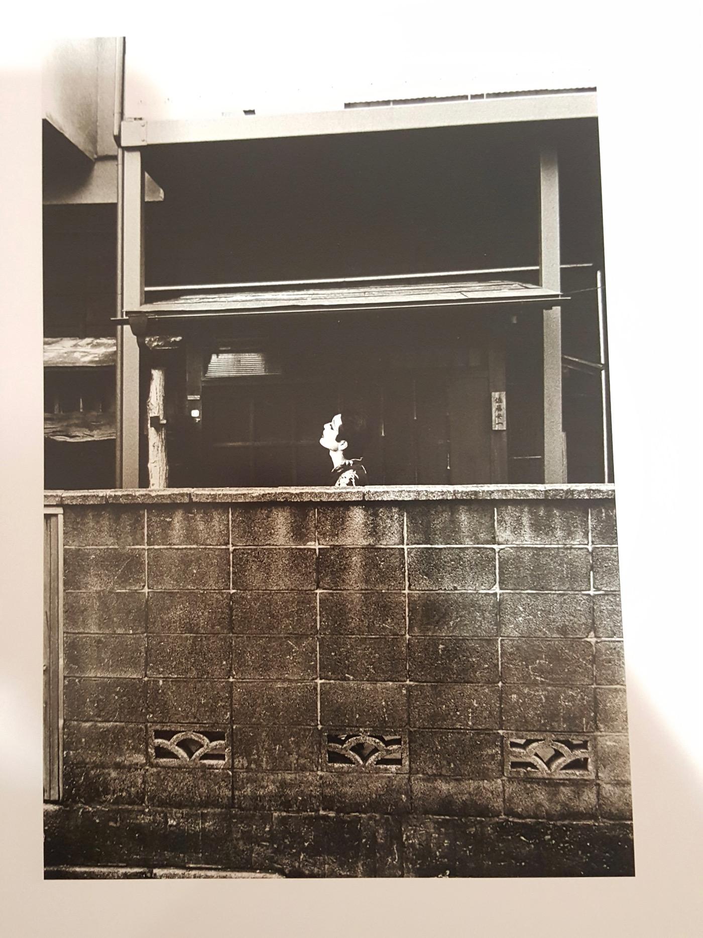 Simmon: A Private Landscape by Eikoh Hosoe