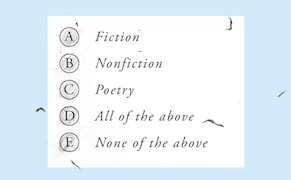 Post image for Testing Form: Novels by Alejandro Zambra and Matías Celedón