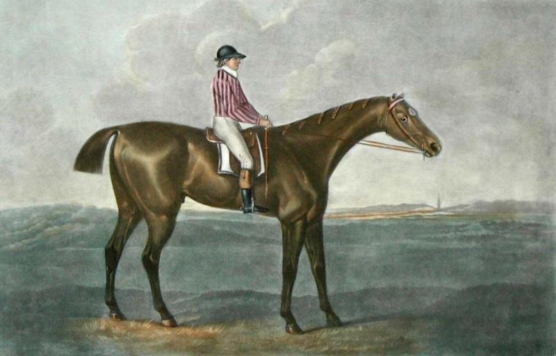 "George Stubbs, ""Skyscraper"" (1790s) (via Wikimedia)"