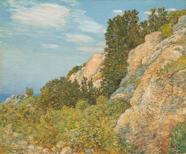 """Childe Hassam, """"The Laurel in the Ledges, Appledore"""" (1905), oil on canvas, North Carolina Museum of Art, Raleigh, promised gift of Ann and Jim Goodnight"""