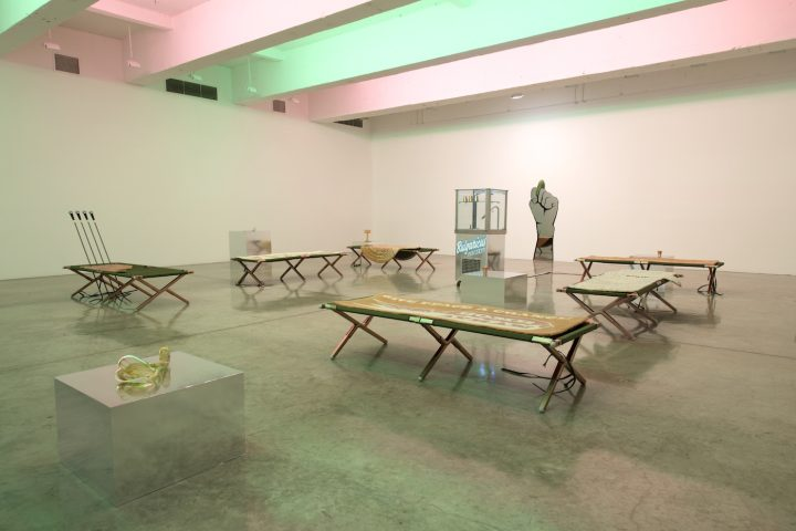 """Slavs and Taters, """"After Pasteur,"""" installation view"""