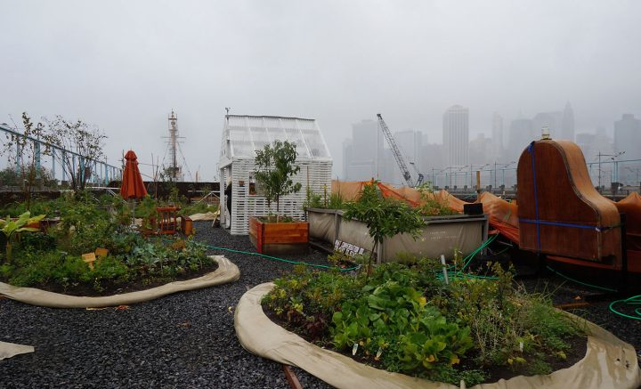 """Mary Mattingly's """"Swale"""" on a rainy day (all photos by the author for Hyperallergic unless otherwise noted)"""